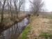 Creek study - 16